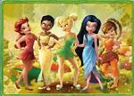 Fairies Puzzle