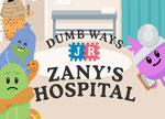 Zany's Hospital