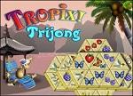 Trijong