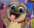 Puppy Dog Pals On A Mission